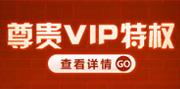 VIP特权